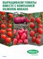 Vilmorin Tomato Brochure